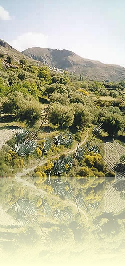 In the heart of the Alpujarras valley